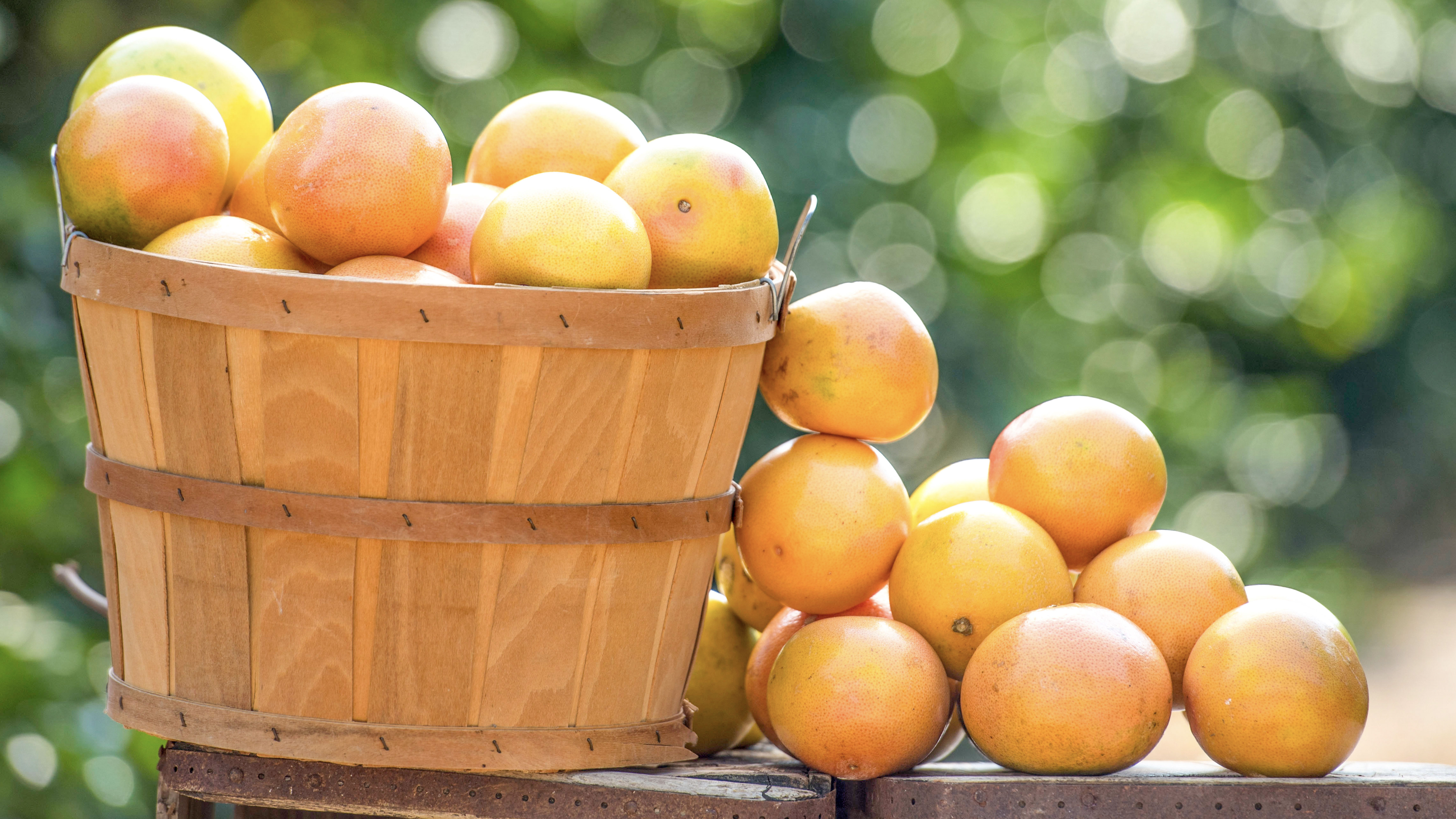 ruby red grapefruits in a fruit basket