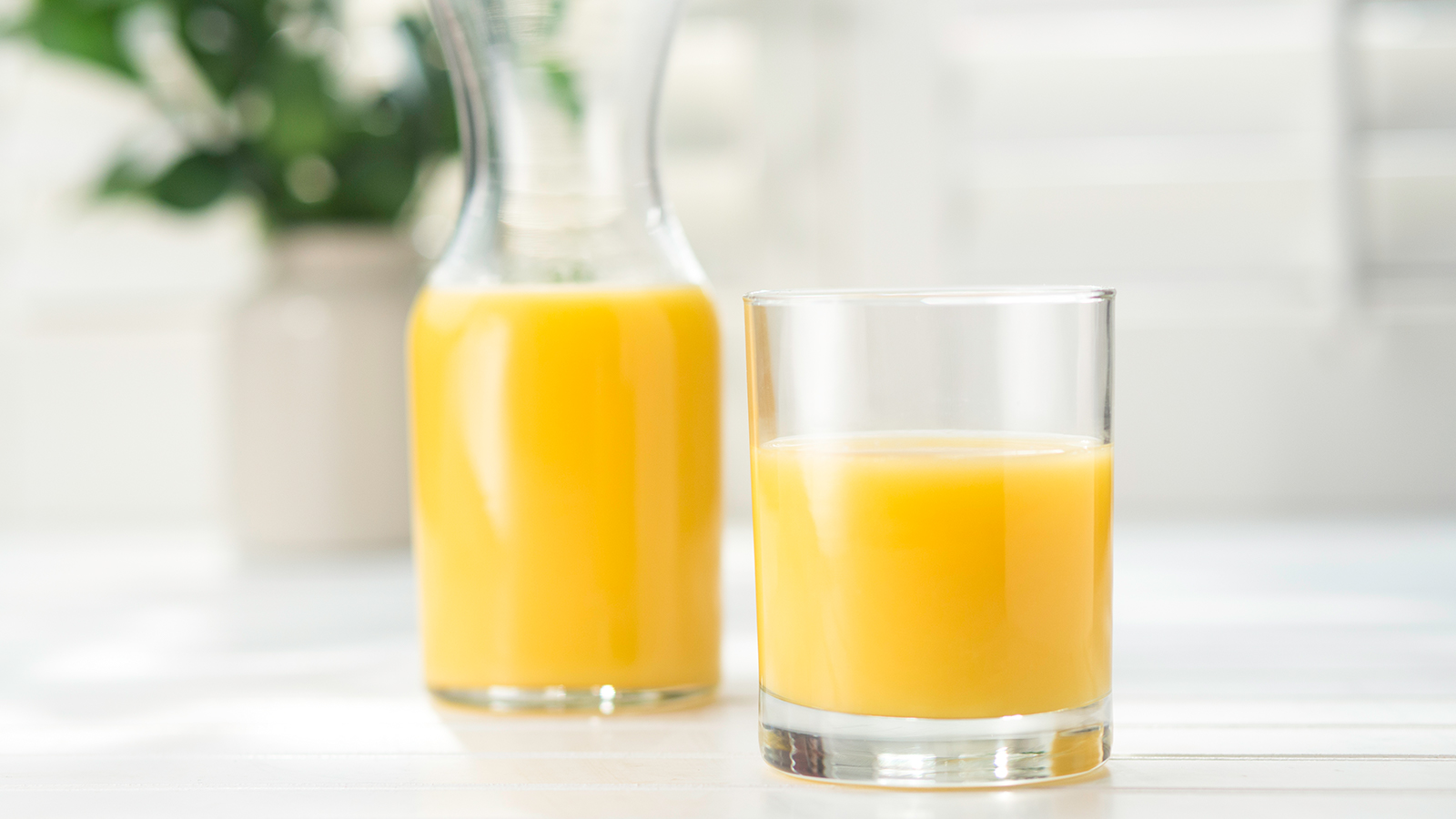 a carafe and glass of florida orange juice