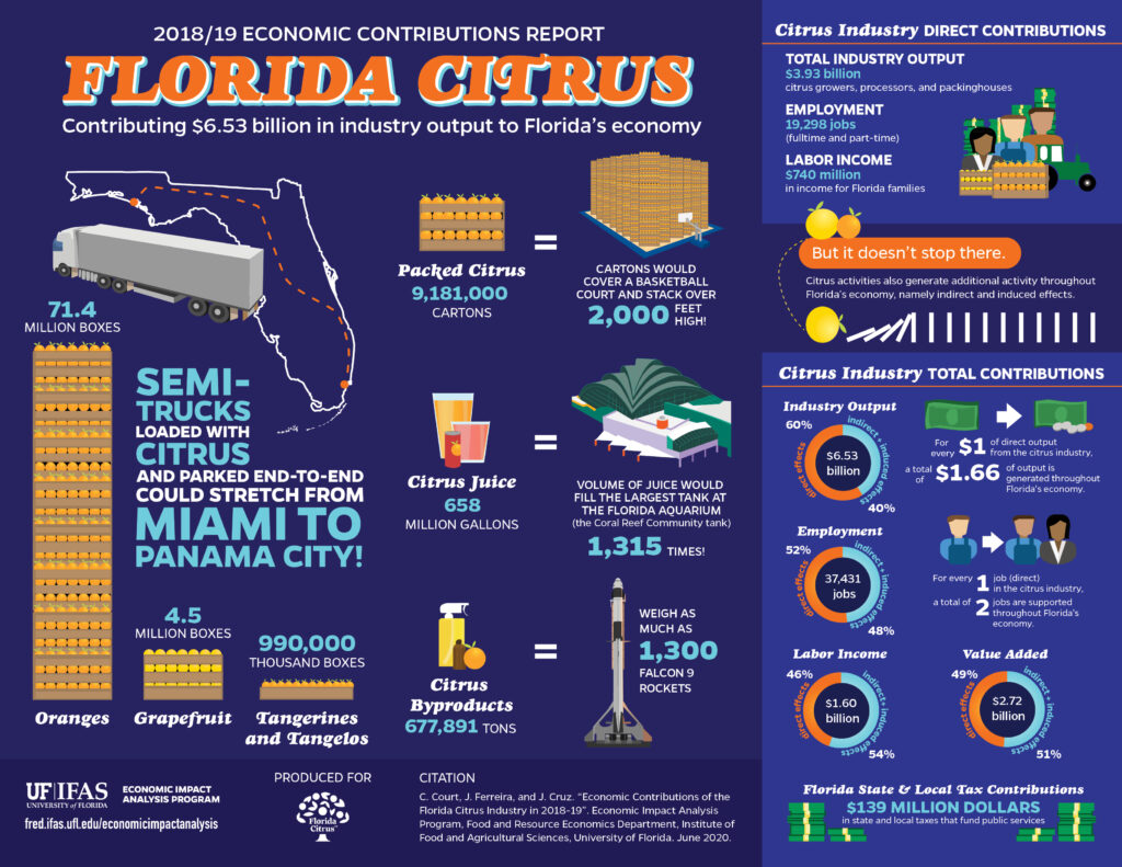 infographic of economic contributions to Florida citrus for 2018-2019