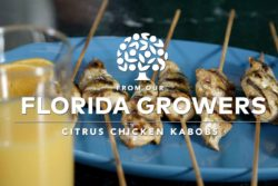Citrus Chicken Kabobs
