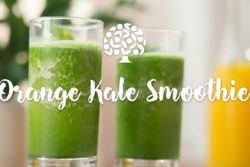 image of two kale smoothies