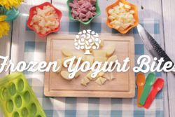 Frozen Yogurt Bites Recipe