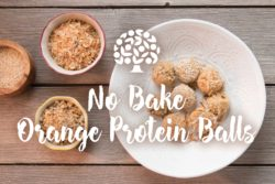 No Bake Orange Protein Balls