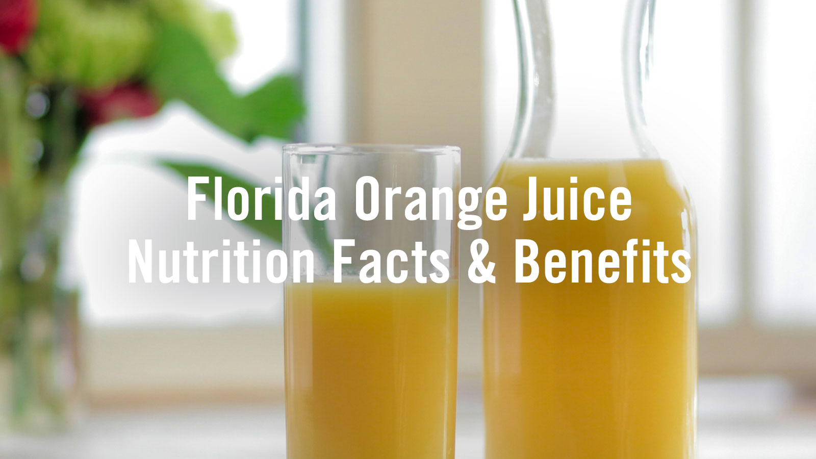 florida orange juice grapefruit florida department of citrus