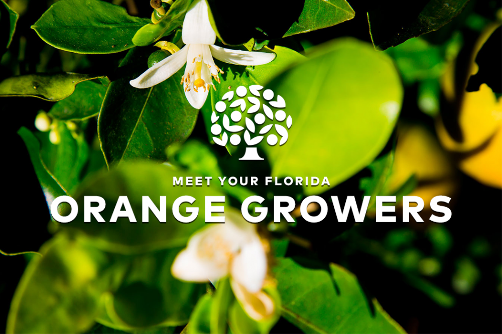 Meet Your Growers